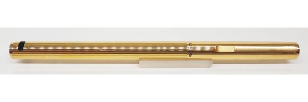 Aurora - Hastil - Stilografica Placcata Oro - Pennino Oro